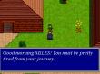 Shining Valour - Screenshot 2